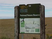 Nature Reserve sign at Lindisfarne